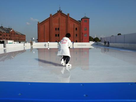 20081212_skate