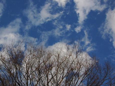 20081216_sky