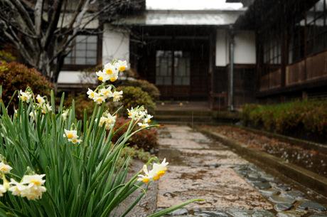 20090130_kaizoji1