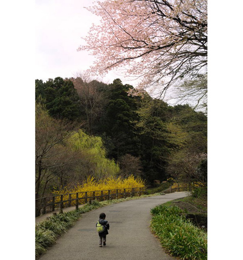 20090328_chuokoen2