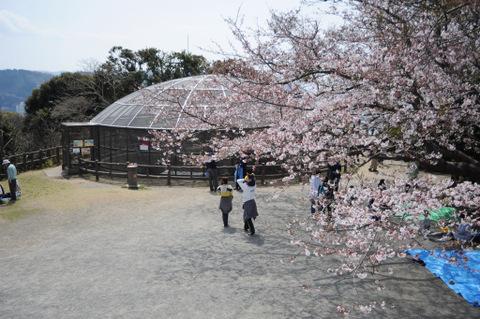 20090404_hiroyama1