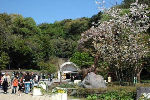 20090412_kanazawazoo2