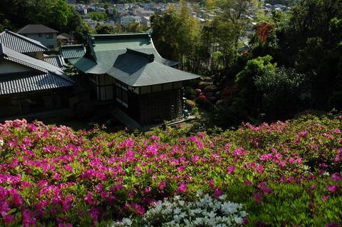 20090426_butsugyoji1