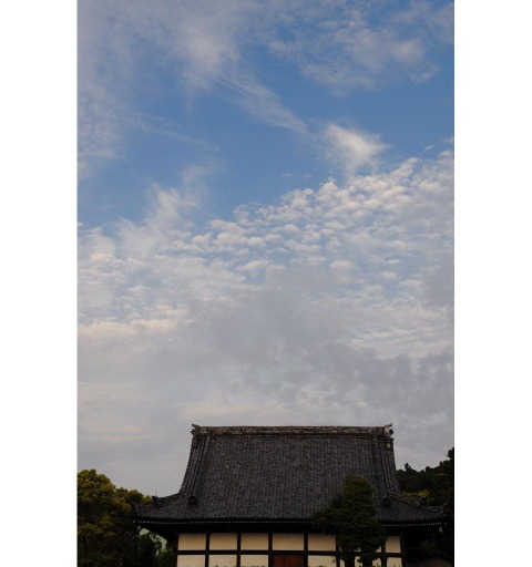 20090504_hongakuji2