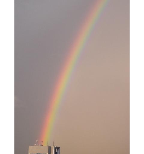 20090508_rainbow2