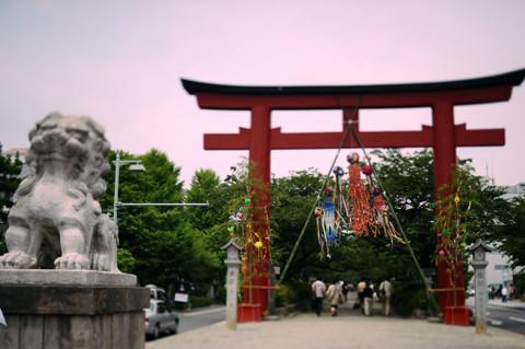 20090704_dankazura1
