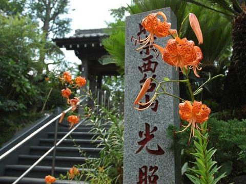 20090719_koshoji
