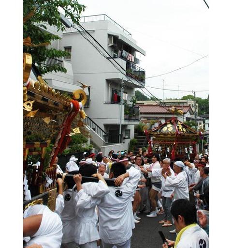 20090719_yakumo04