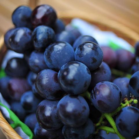 200907814_grape
