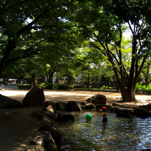 200907816_park