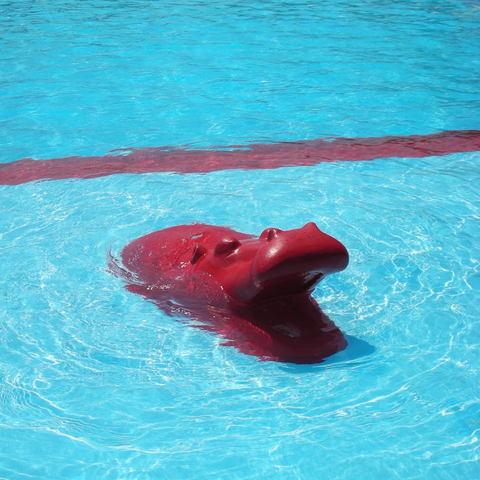 200907819_pool1_2