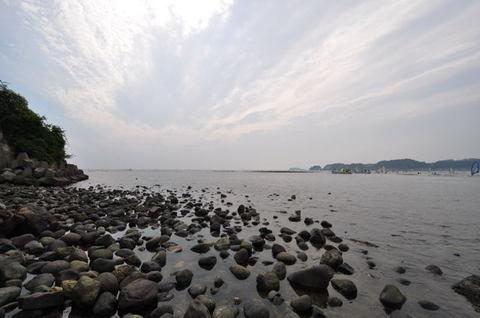 20090823_zaimokuza2