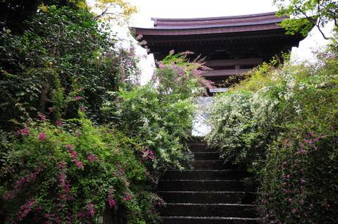 20090912_kaizoji2