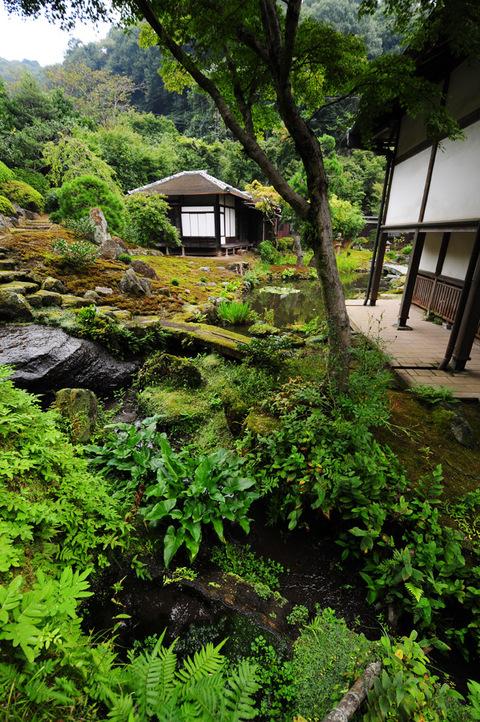 20090912_kaizoji4