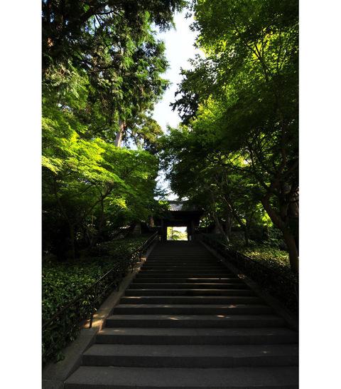 20090924_engakuji2_2
