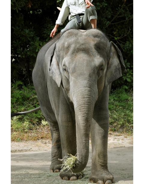 2009122_zoo2