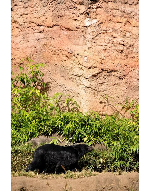 2009122_zoo5