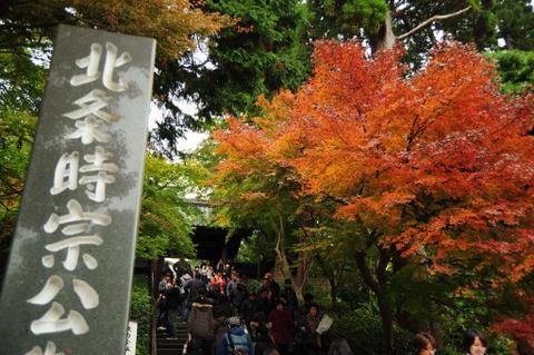 20091122_engakuji2