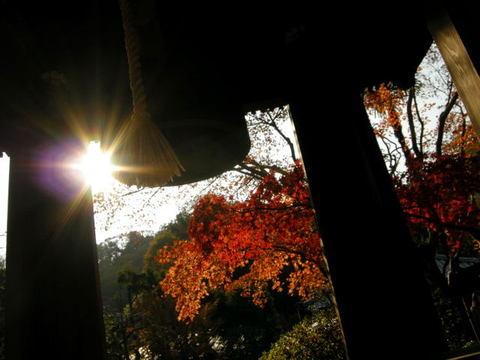 20091128_kaizoji11