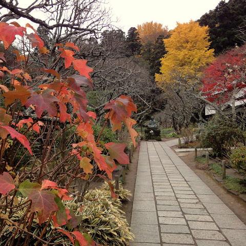 20091205_tokeiji1