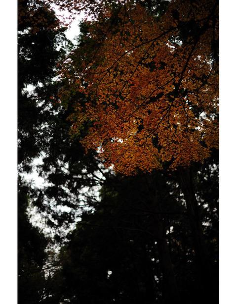 20091213_jufukuji2