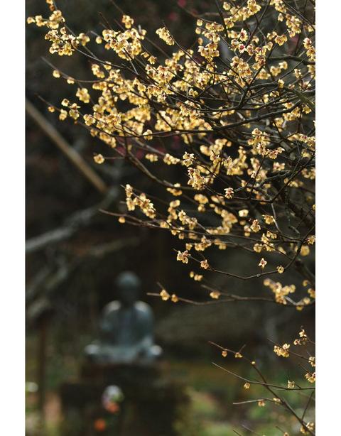 20100111_tokeiji1