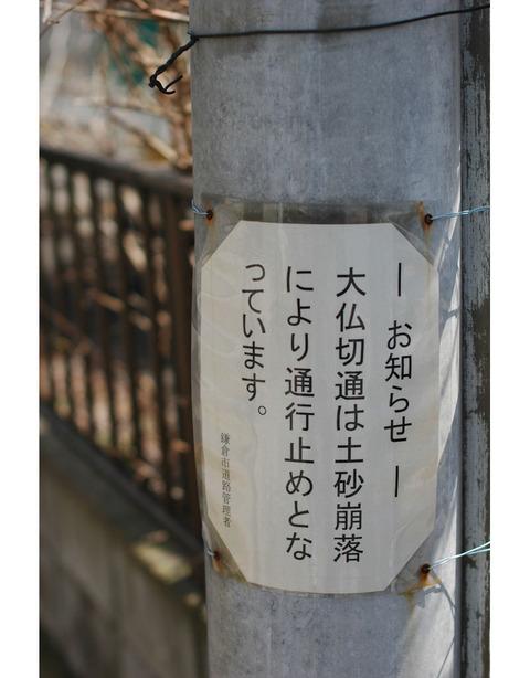 20100322_sanpo3