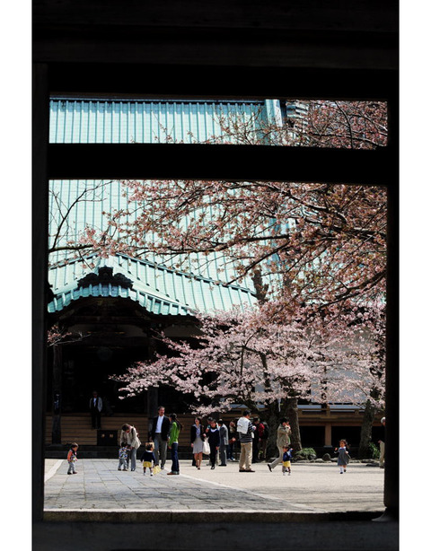20100403_komyoji3