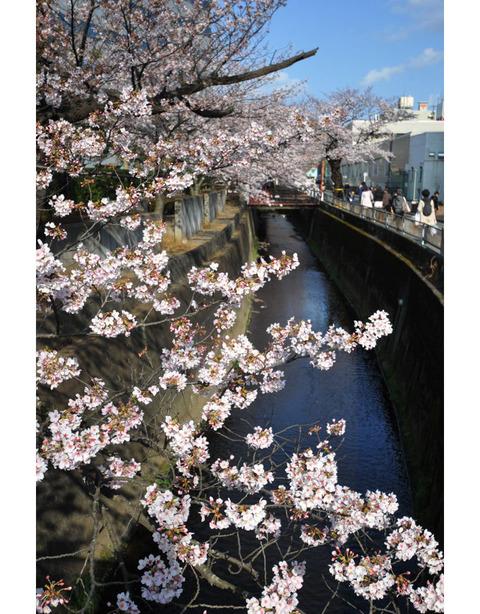 20100403_sunaoshi2