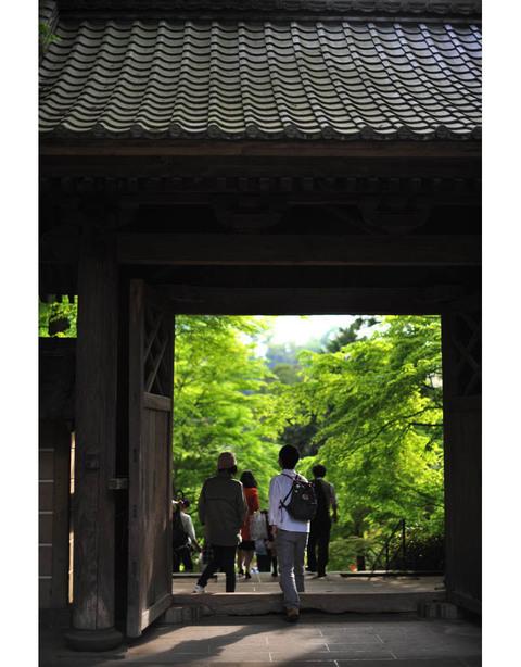 20100504_engakuji12