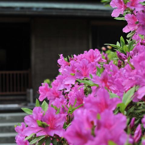 20100505_tokeiji1