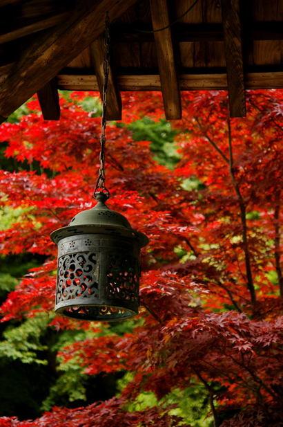 20100605_kaizoji3