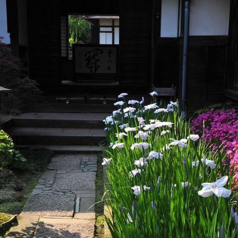 20100612_kaizoji1