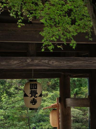 20101003_engakuji1