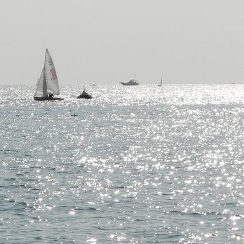 20101016_sea1