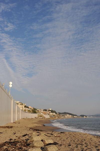20101107_sea2