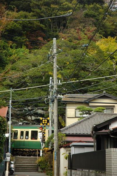 20101122_koyo2