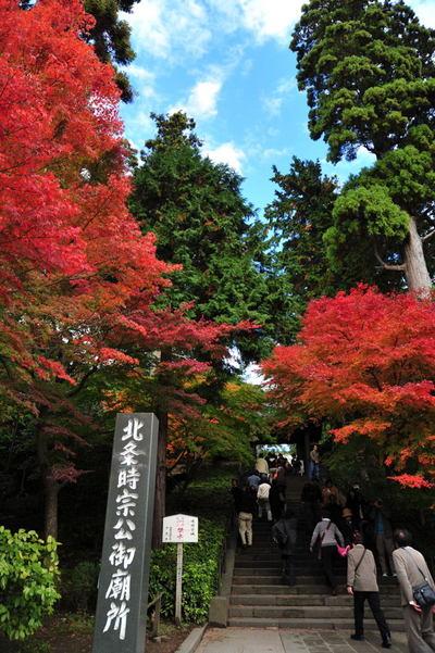20101123_engakuji3