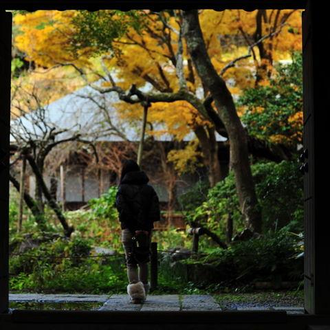20101123_zuisenji1