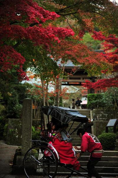 20101123_kaizoji6