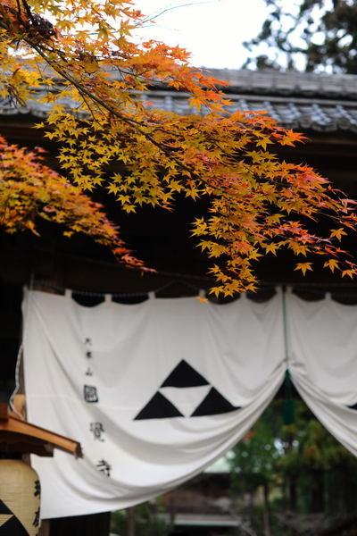 20110103_engakuji2