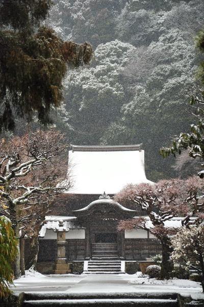 20110211_engakuji8