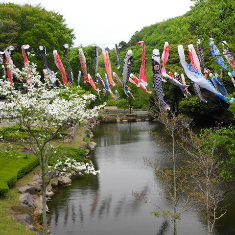20110430_chuokoen1