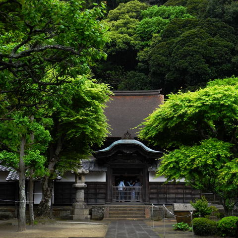 20110501_engakuji1