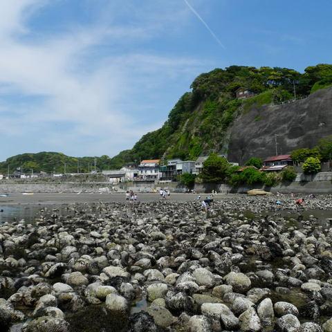 20110508_zaimokuza1