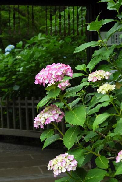 20110612_tokeiji6