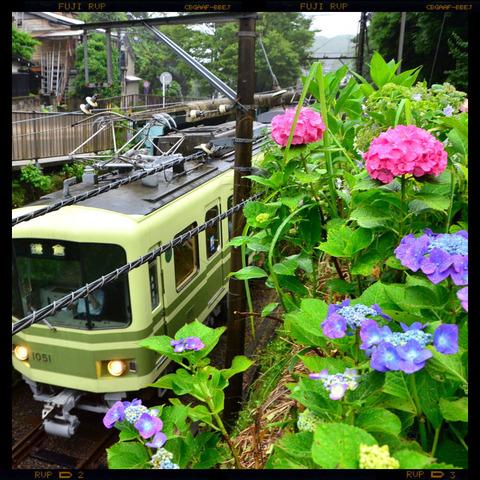 20110619_gokurakuji