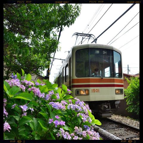 20110701_goryo