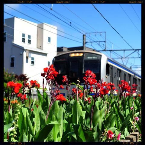 20110712_yukinoshita1
