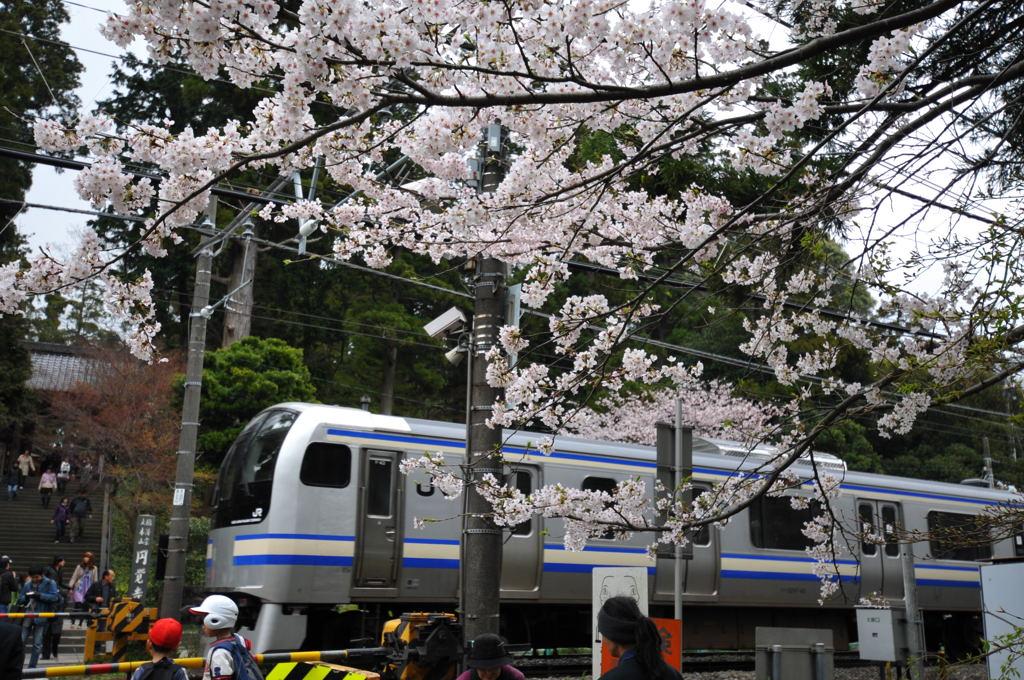 20100404_takumi2_2